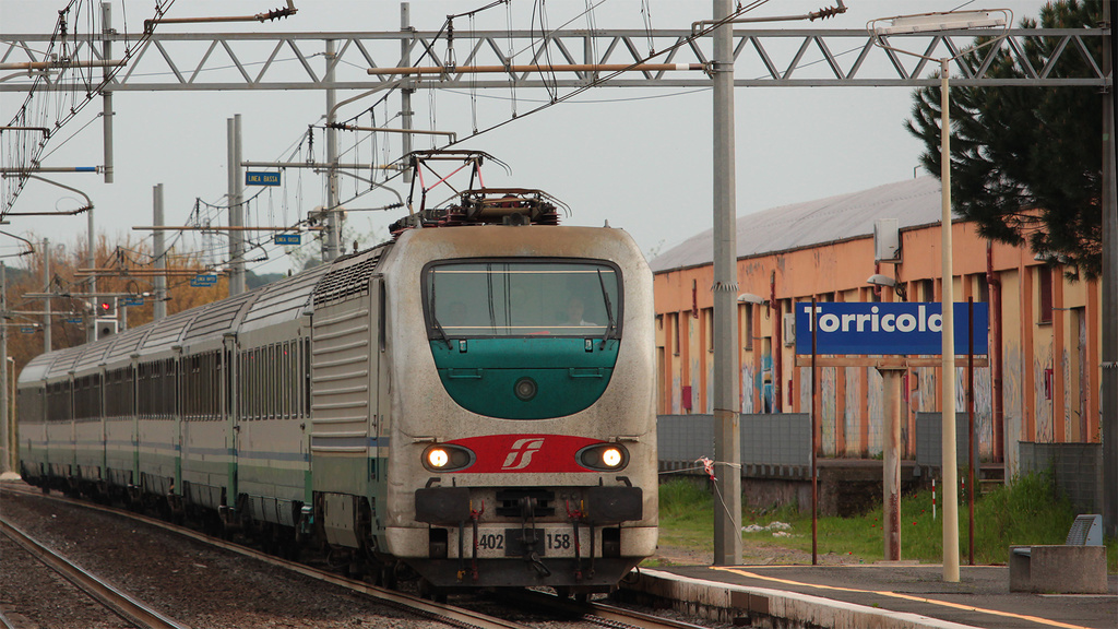 E402 158 Torricola