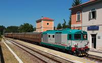 D445 1145 Campo Di Giove