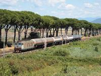 Transito nei pressi di Bivio Mortellini per questo merci di prodotti chimici da Rho verso Scarlino.
