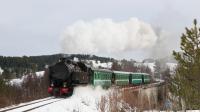 20 Febbraio 2018: La FCL 353 è impegnata in uno degli oramai consueti treni storici/turistici a vapore in Sila.
