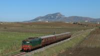 11 Novembre 2018: Treno Storico da Palermo Centrale per Castelvetrano, con la 445 1006, in transito presso un cavalcavia vicino Gallitello (TP).