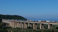 E494 017 viadotto Angitola
