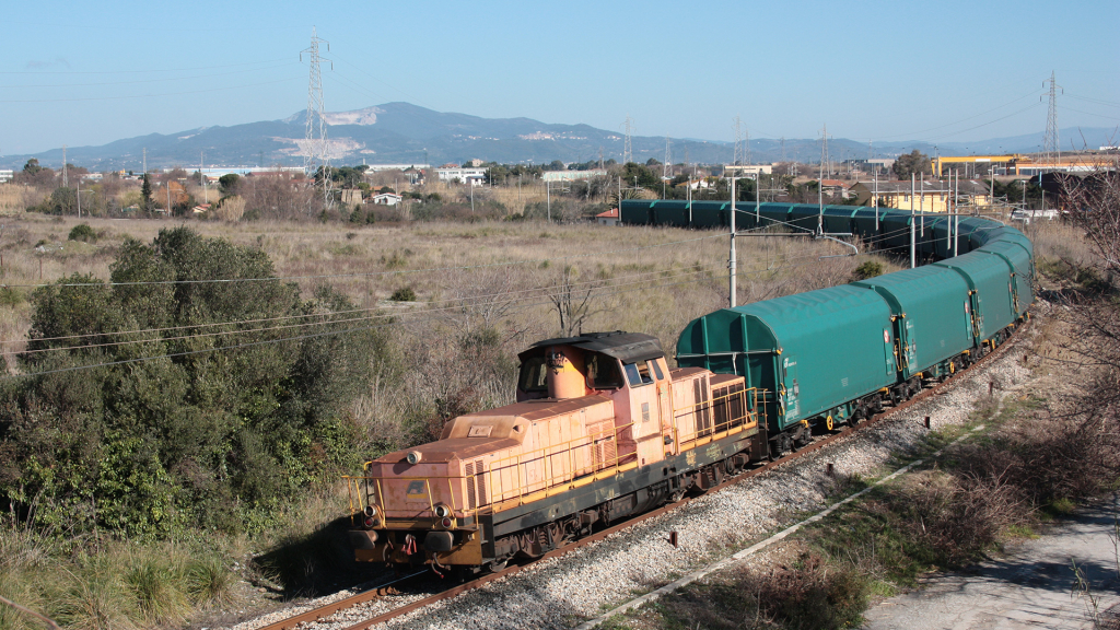 D145 2042 Fiorentina di Piombino
