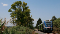 Minuetto Diesel 038 Siracusa