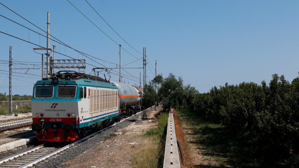 E652 060 Candida