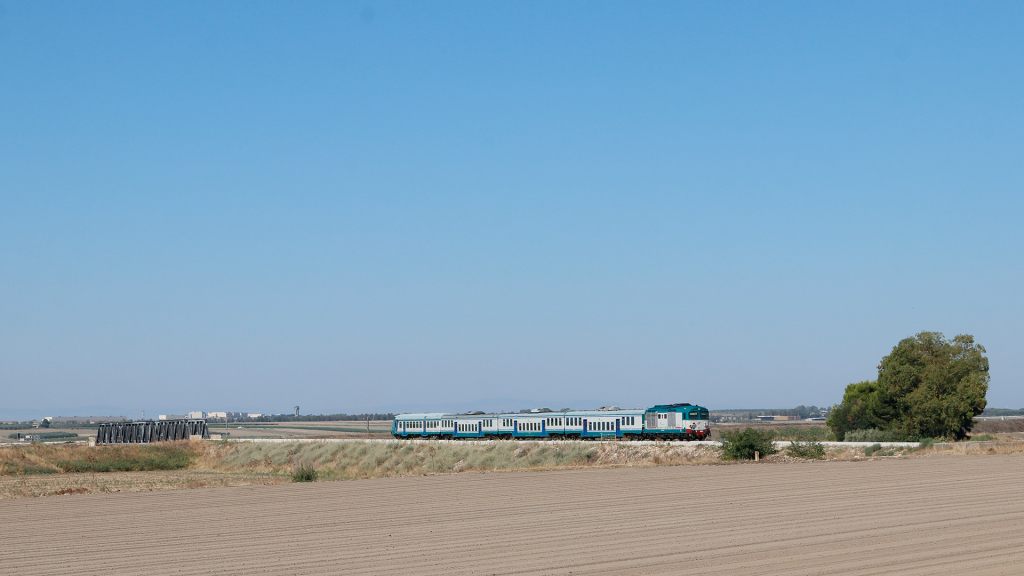 D445 1083 Candelaro