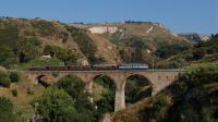 E656 590 treno degli Dei Tropea